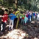 bosque 3º I (4)