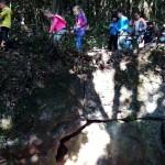 bosque 3º I (6)