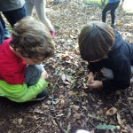 bosque 3º I (7)