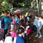 bosque 3º I (8)