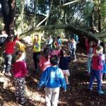 bosque 3º I (9)