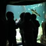 museo marítimo 1º I (3)