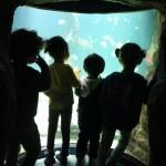 museo marítimo 1º I (8)