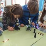 práctica microscocpio 6ºP (3)