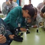práctica microscocpio 6ºP (7)